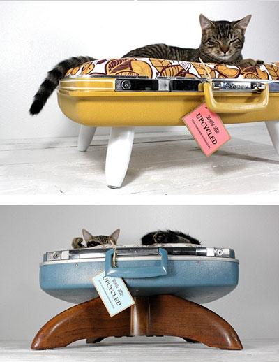 Кошки своими руками youtube